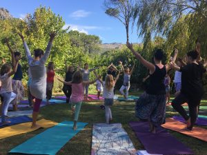 Tree pose - YogaBeez Foundation Training course, Cape Town