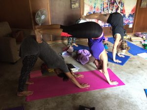 YogaBeez Advanced Yoga Training, Johannesburg - double downward dog